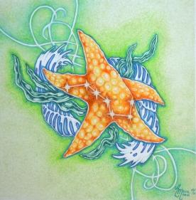 Starfish Balance